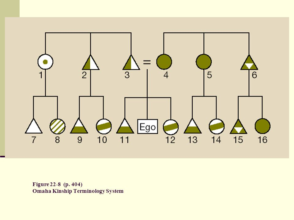 Figure 22-8 (p. 404) Omaha Kinship Terminology System