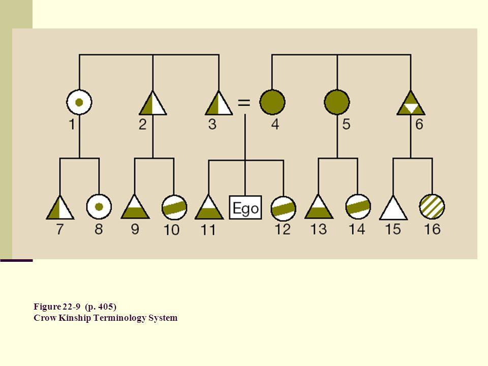 Figure 22-9 (p. 405) Crow Kinship Terminology System