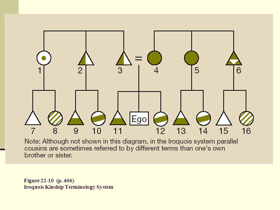 Figure 22-10 (p. 406) Iroquois Kinship Terminology System