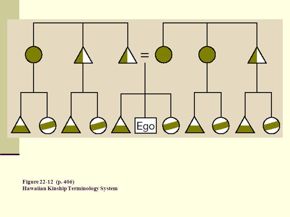 Figure 22-12 (p. 406) Hawaiian Kinship Terminology System