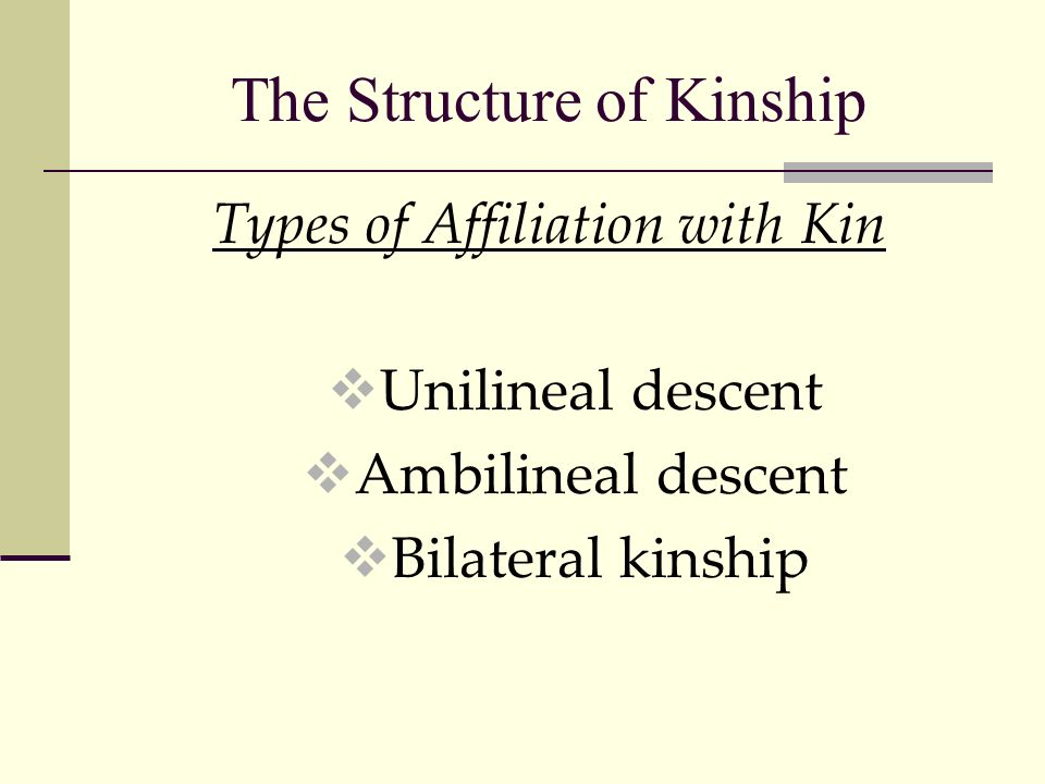 The Structure of Kinship