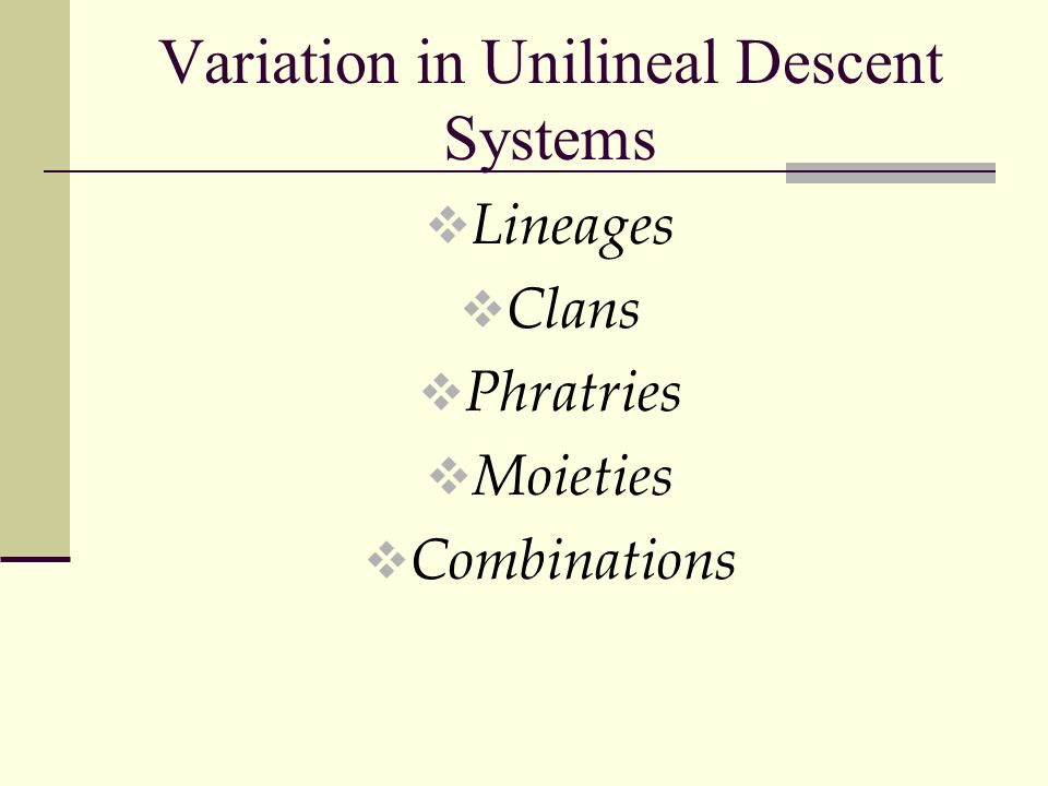 Variation in Unilineal Descent Systems