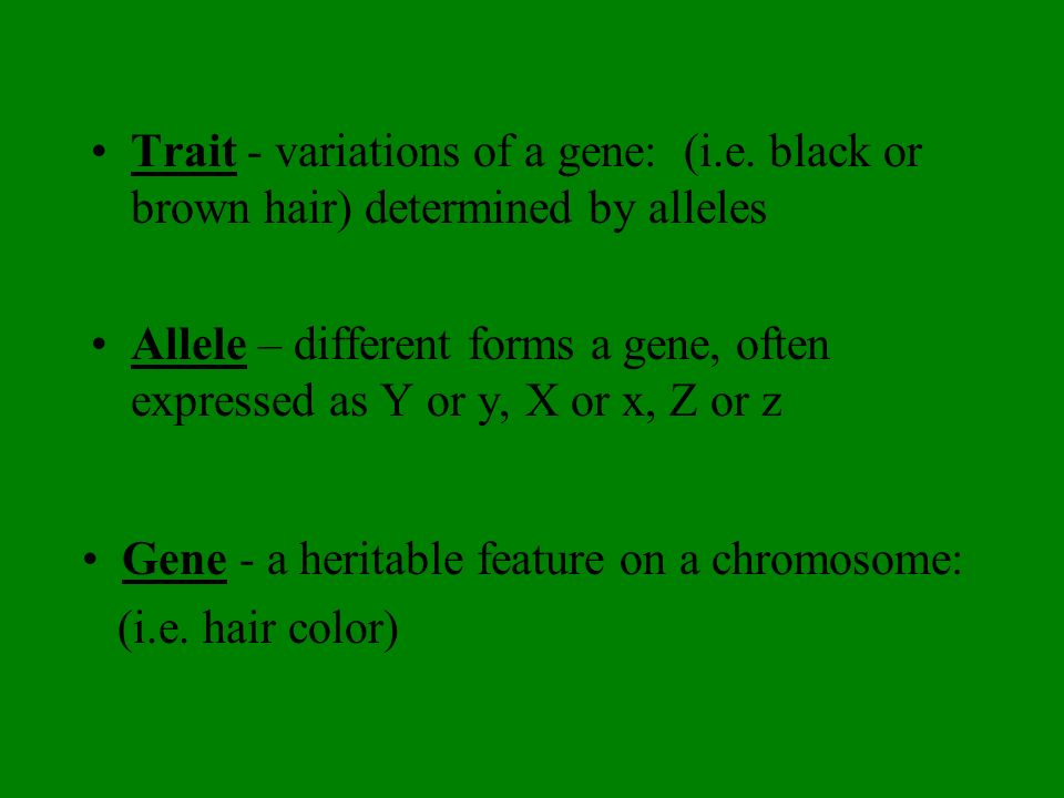 Trait - variations of a gene: (i. e