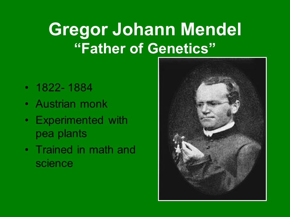 Gregor Johann Mendel Father of Genetics
