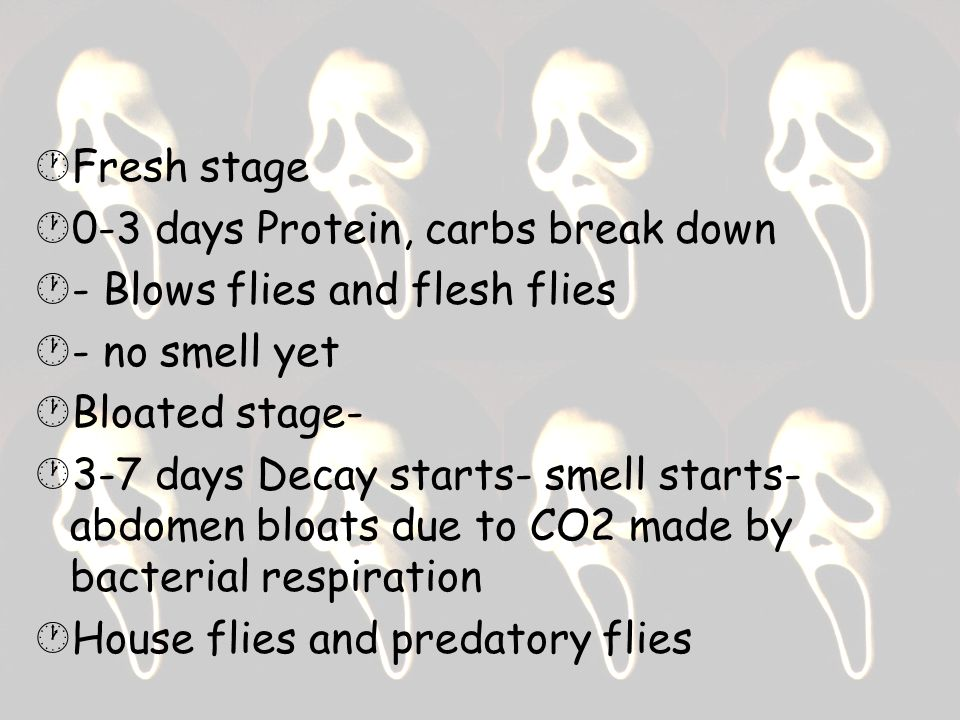 Fresh stage 0-3 days Protein, carbs break down. - Blows flies and flesh flies. - no smell yet. Bloated stage-