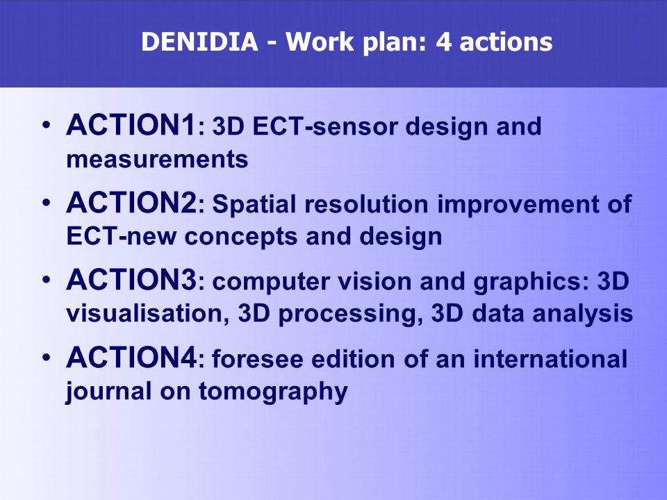 DENIDIA - Work plan: 4 actions
