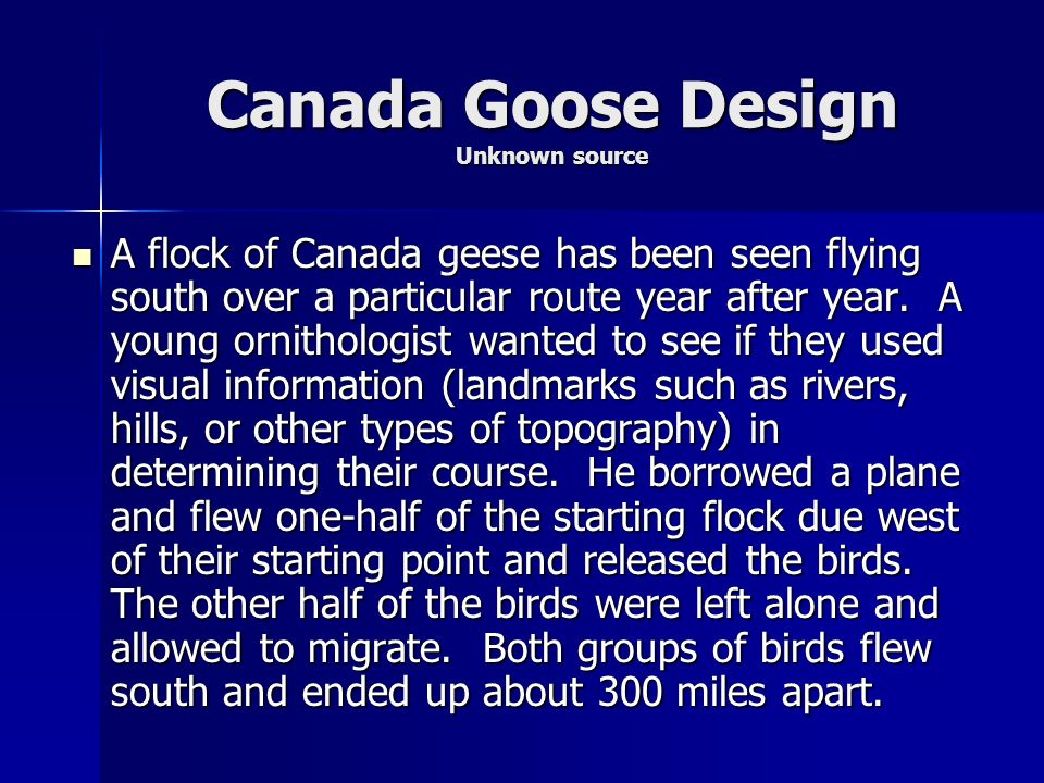 Canada Goose Design Unknown source
