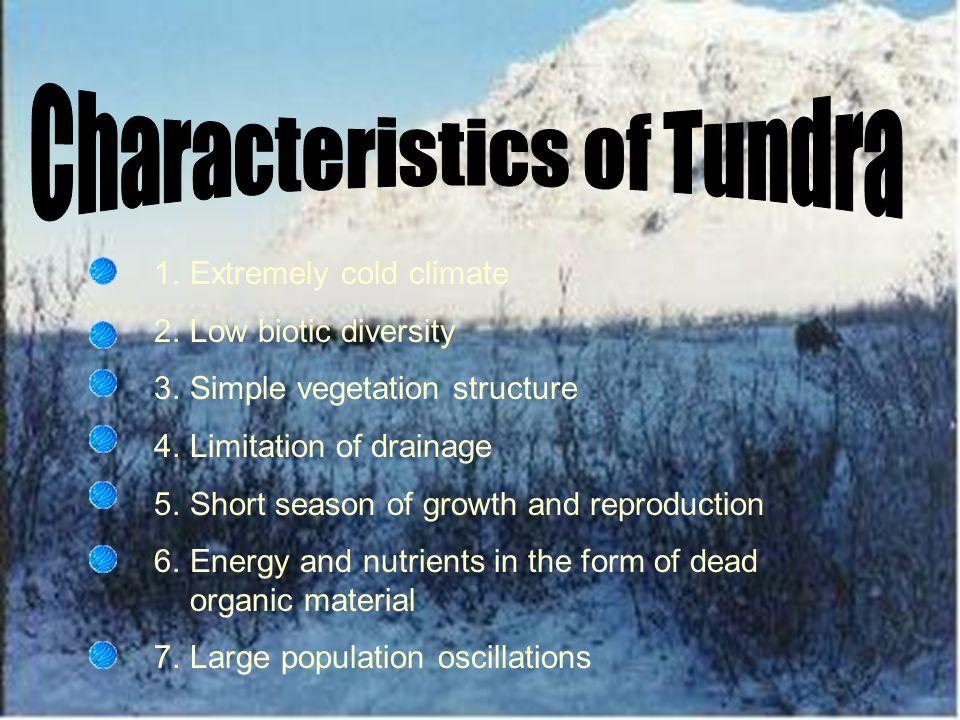 Characteristics of Tundra