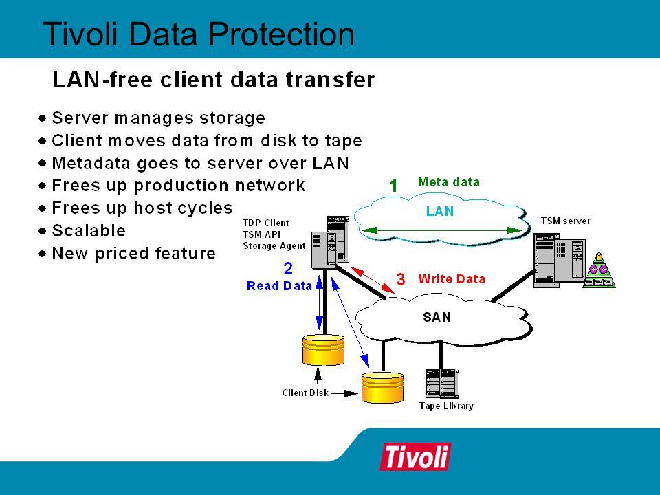 Tivoli Data Protection