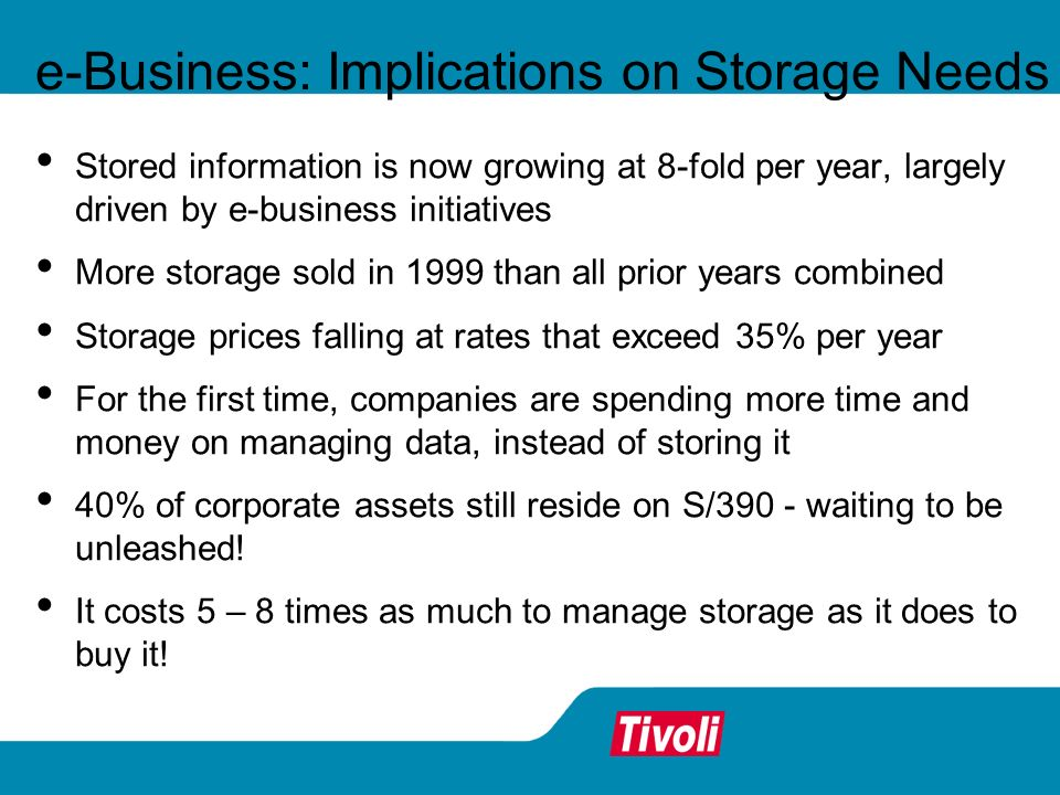 e-Business: Implications on Storage Needs