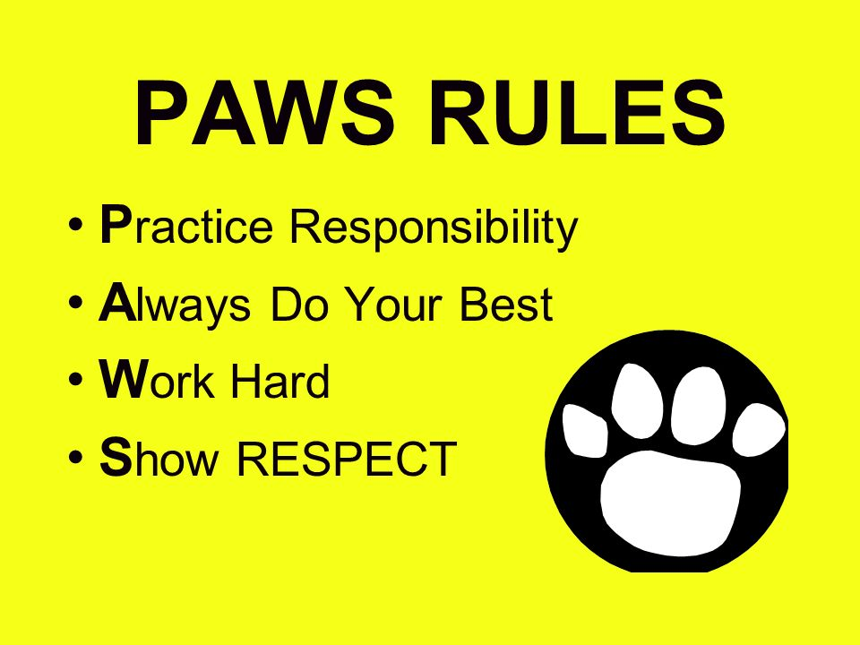 PAWS RULES Practice Responsibility Always Do Your Best Work Hard