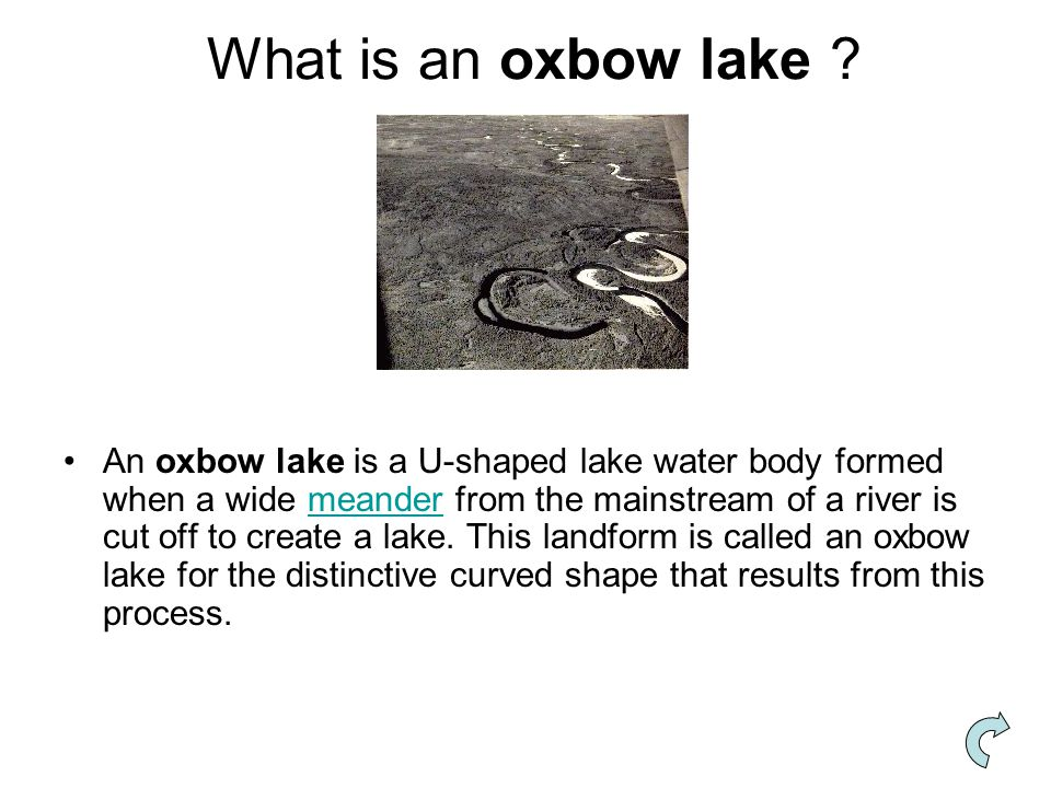 What is an oxbow lake