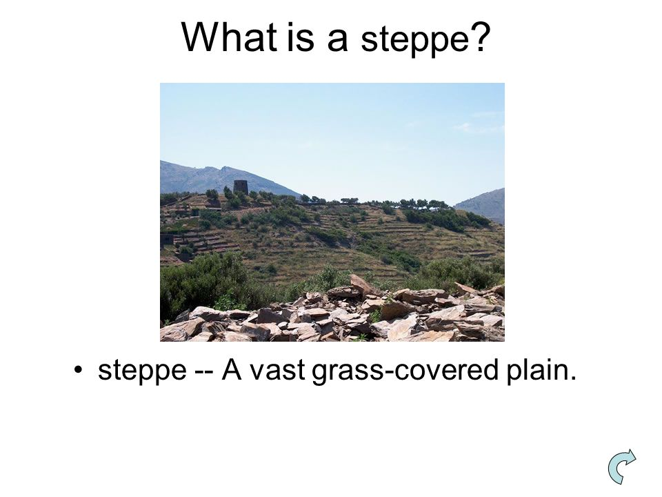 What is a steppe steppe -- A vast grass-covered plain.