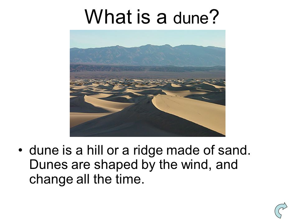 What is a dune. dune is a hill or a ridge made of sand.
