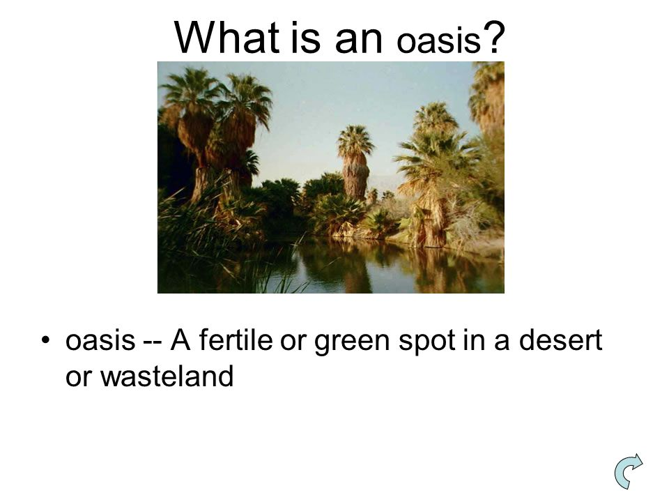 What is an oasis oasis -- A fertile or green spot in a desert or wasteland