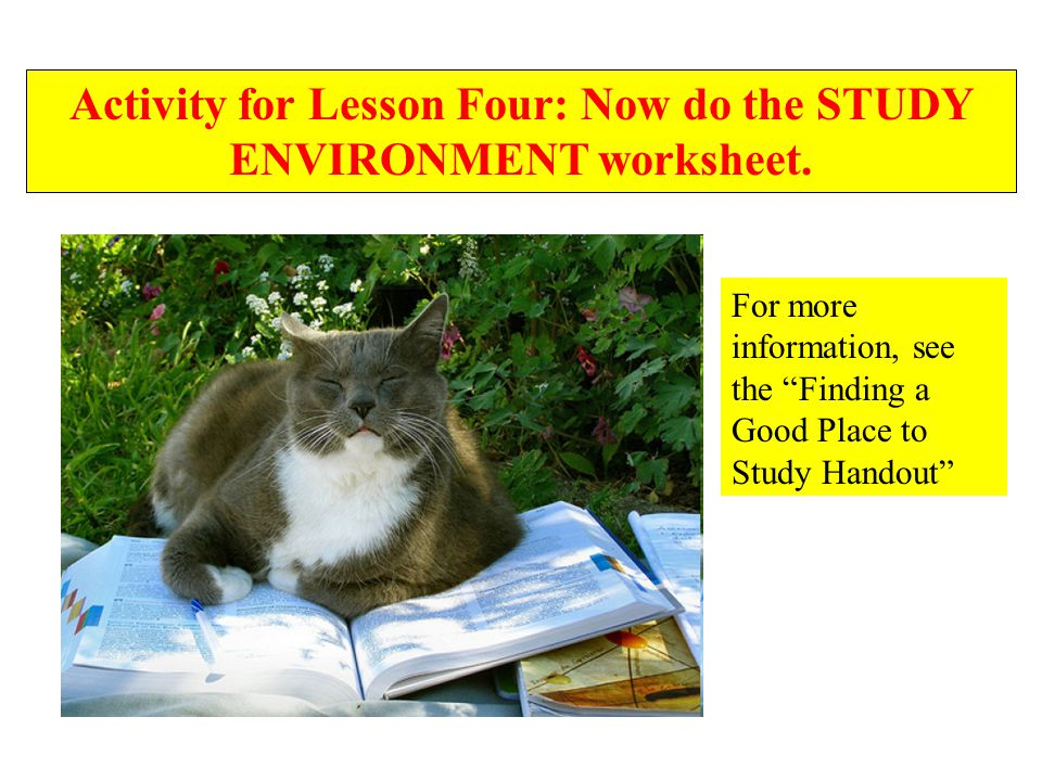 Activity for Lesson Four: Now do the STUDY ENVIRONMENT worksheet.