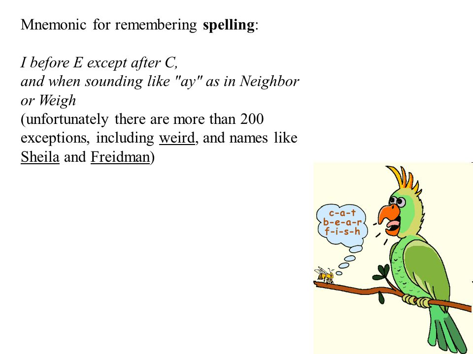 Mnemonic for remembering spelling: I before E except after C, and when sounding like ay as in Neighbor or Weigh (unfortunately there are more than 200 exceptions, including weird, and names like Sheila and Freidman)