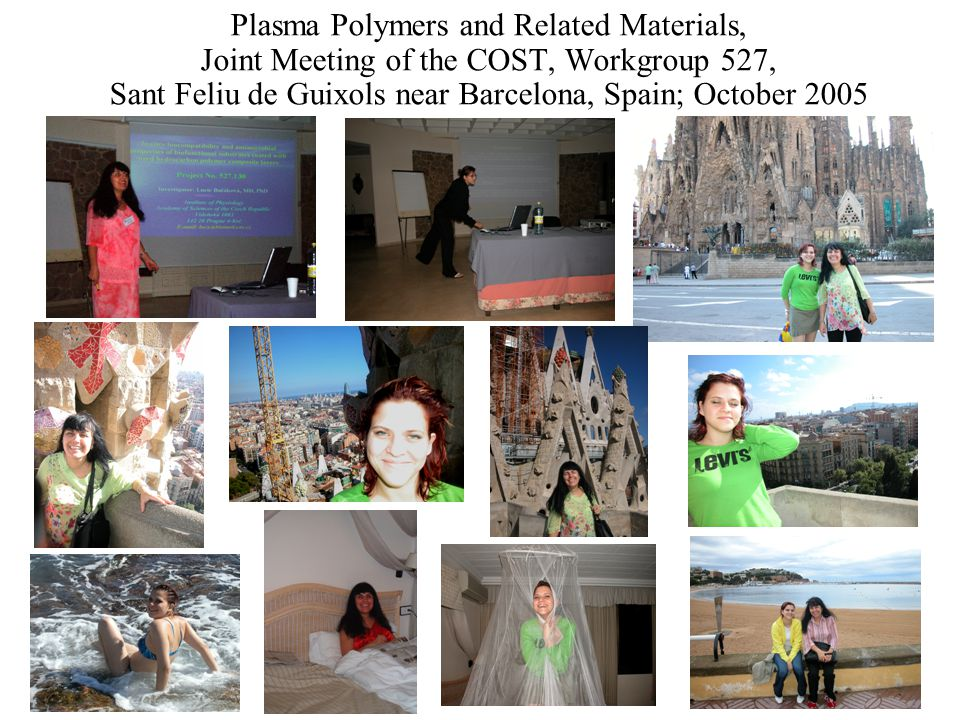 Plasma Polymers and Related Materials, Joint Meeting of the COST, Workgroup 527, Sant Feliu de Guixols near Barcelona, Spain; October 2005