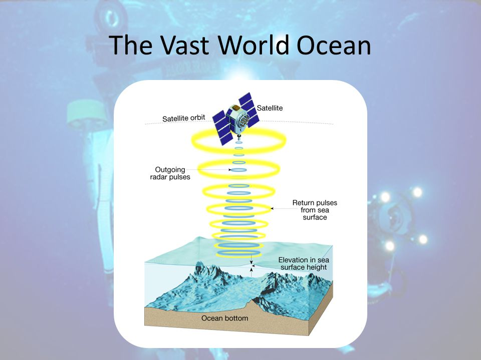 The Vast World Ocean