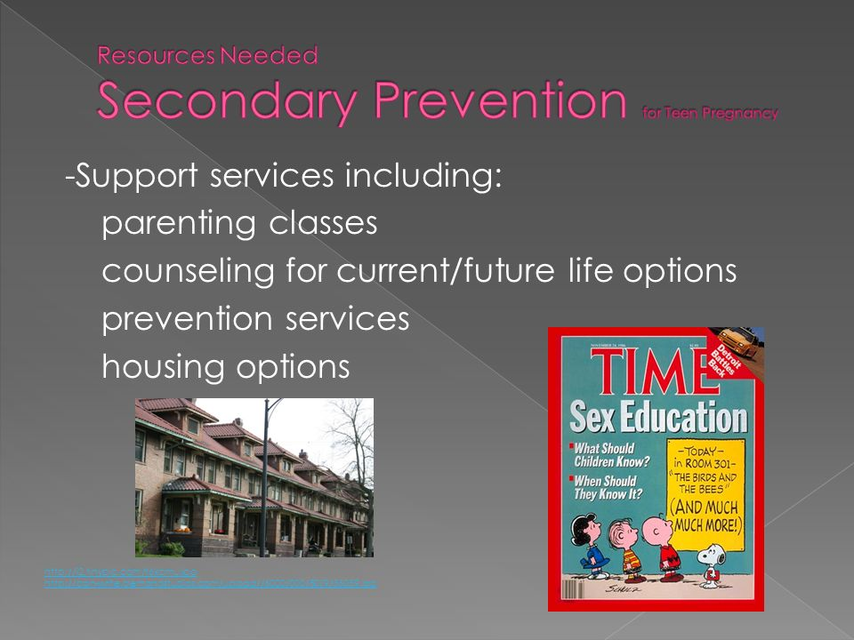 Resources Needed Secondary Prevention for Teen Pregnancy