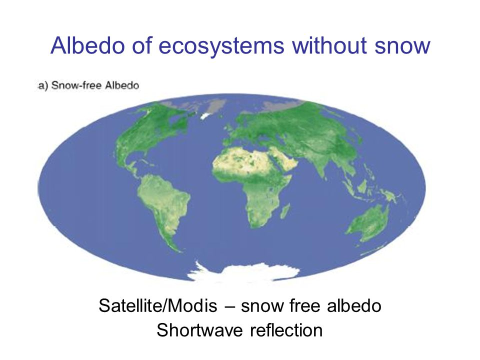 Albedo of ecosystems without snow