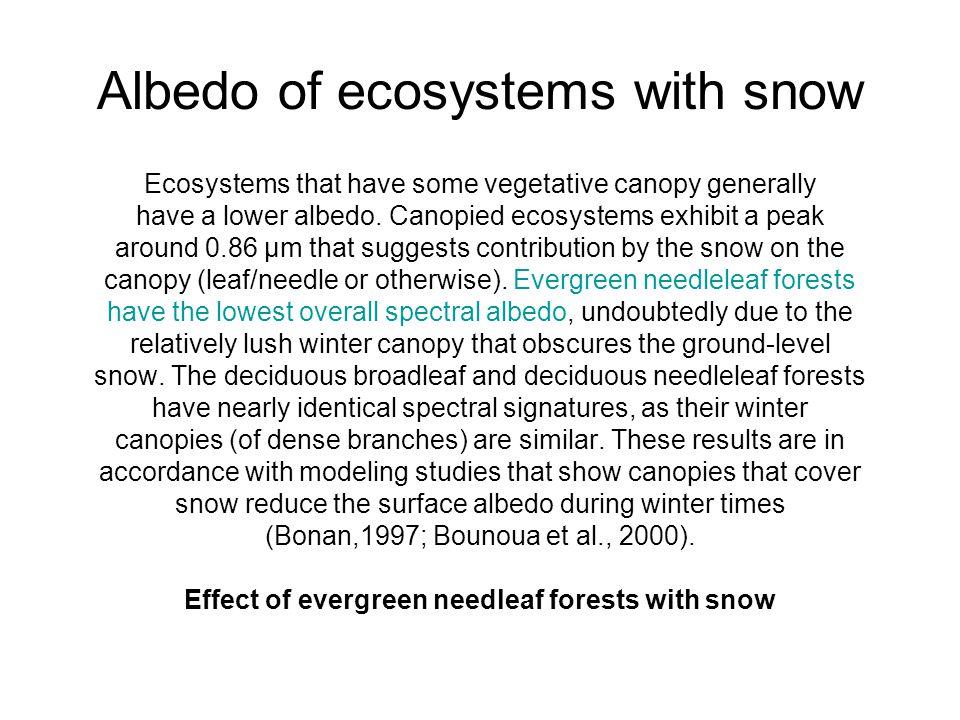 Albedo of ecosystems with snow