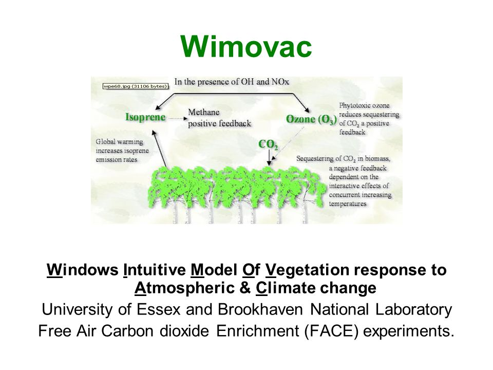 Wimovac Windows Intuitive Model Of Vegetation response to Atmospheric & Climate change. University of Essex and Brookhaven National Laboratory.