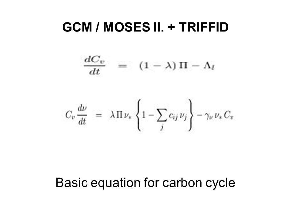 Basic equation for carbon cycle
