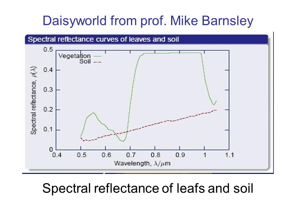 Daisyworld from prof. Mike Barnsley