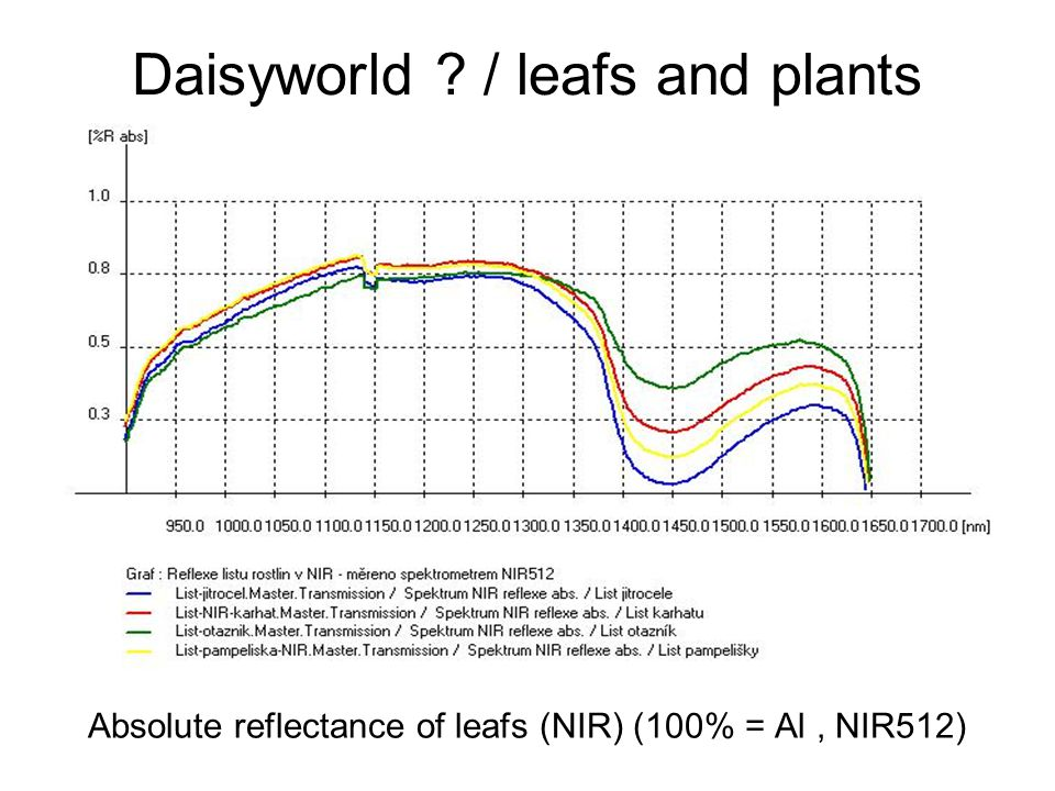 Daisyworld / leafs and plants