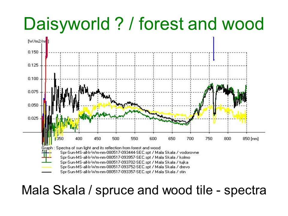 Daisyworld / forest and wood