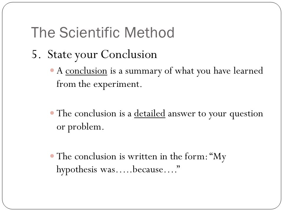 The Scientific Method 5. State your Conclusion