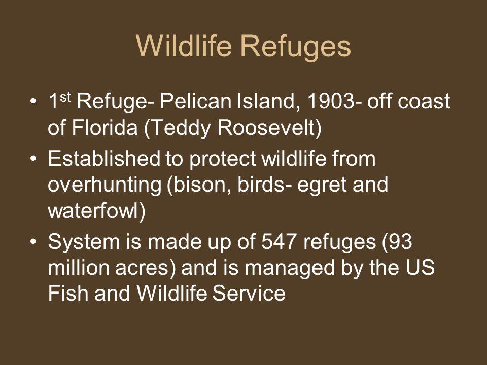 Wildlife Refuges 1st Refuge- Pelican Island, 1903- off coast of Florida (Teddy Roosevelt)