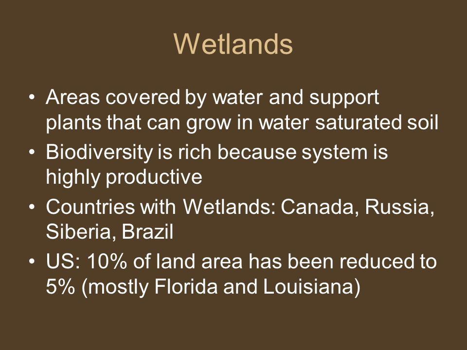 Wetlands Areas covered by water and support plants that can grow in water saturated soil. Biodiversity is rich because system is highly productive.