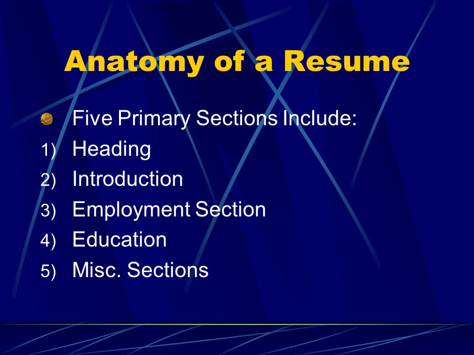 Anatomy of a Resume Five Primary Sections Include: Heading