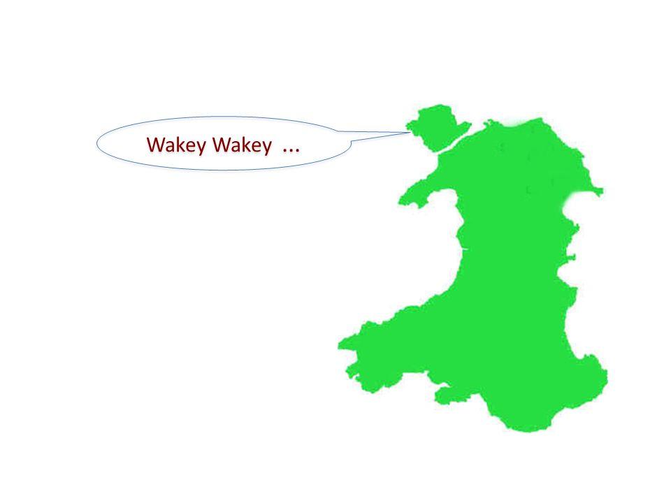 Wakey Wakey ...