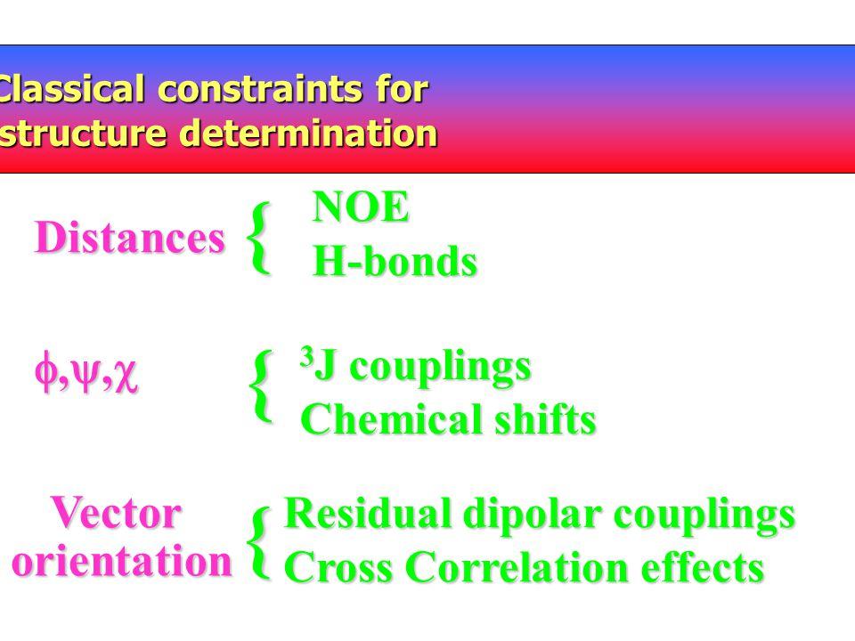 { { { Distances ,, Vector orientation NOE H-bonds 3J couplings