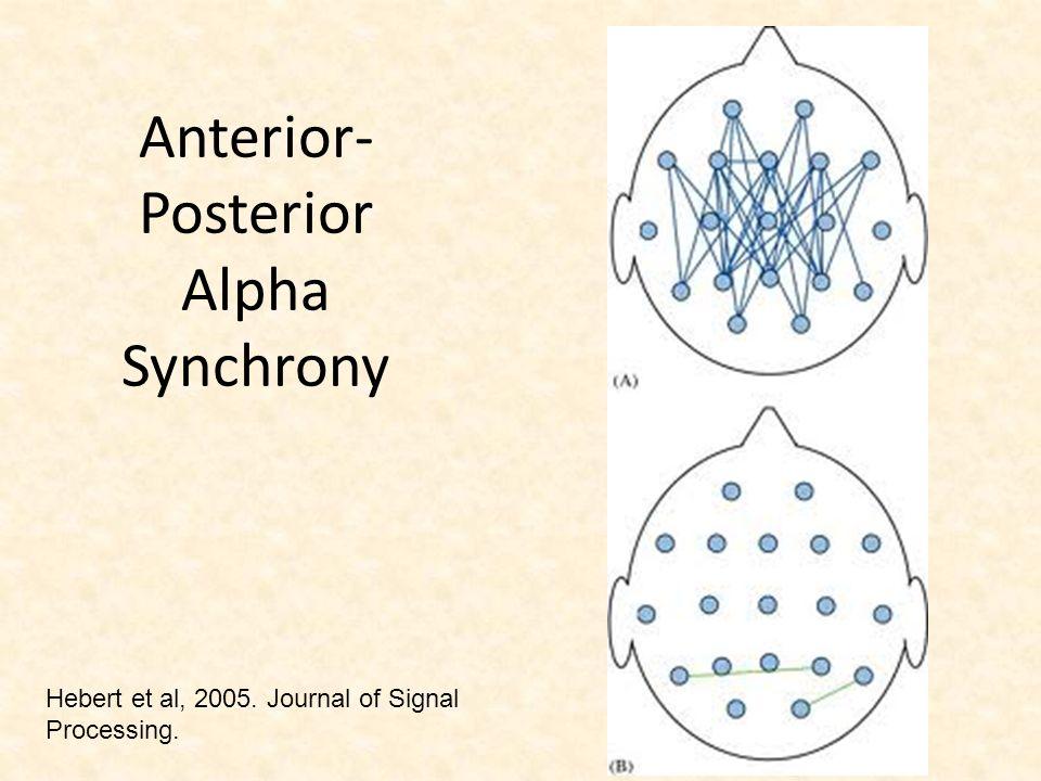 Anterior-Posterior Alpha Synchrony