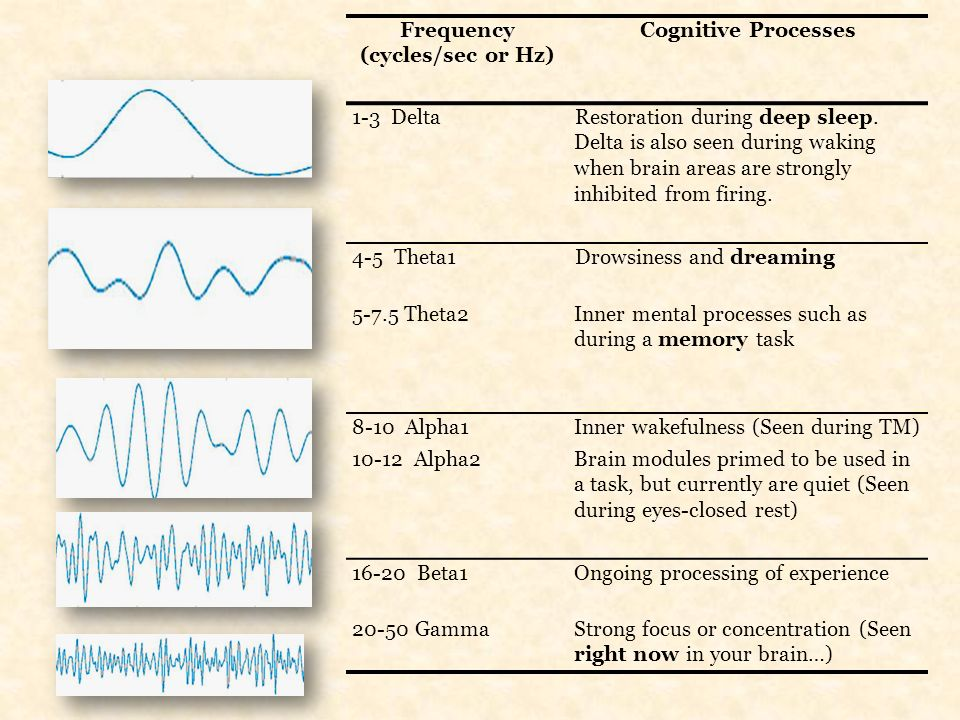 Frequency (cycles/sec or Hz) Cognitive Processes. 1-3 Delta.