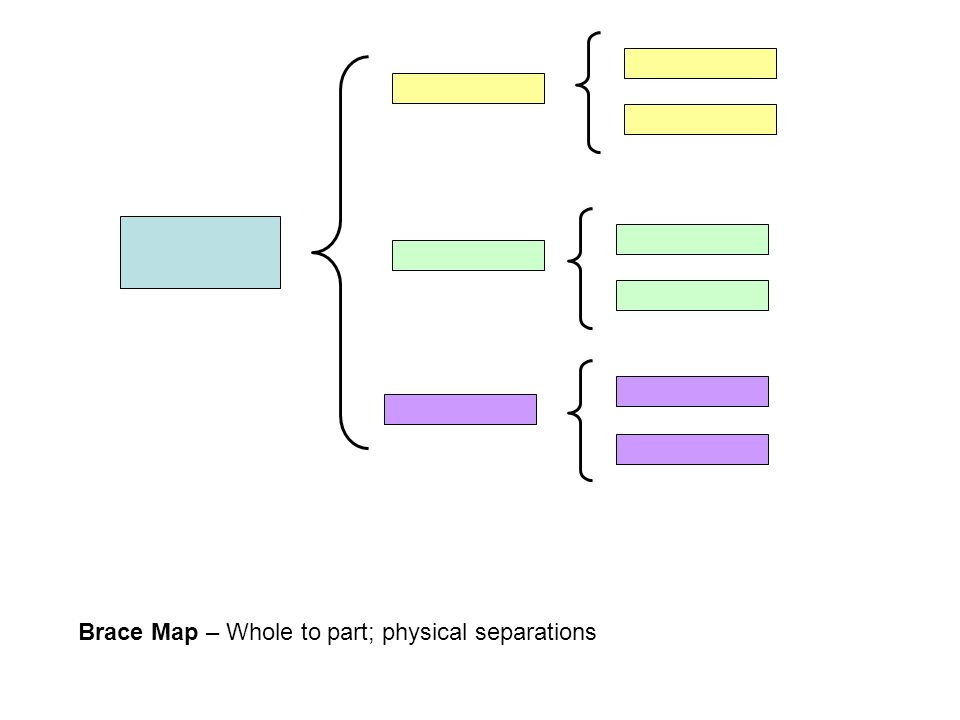 Brace Map – Whole to part; physical separations