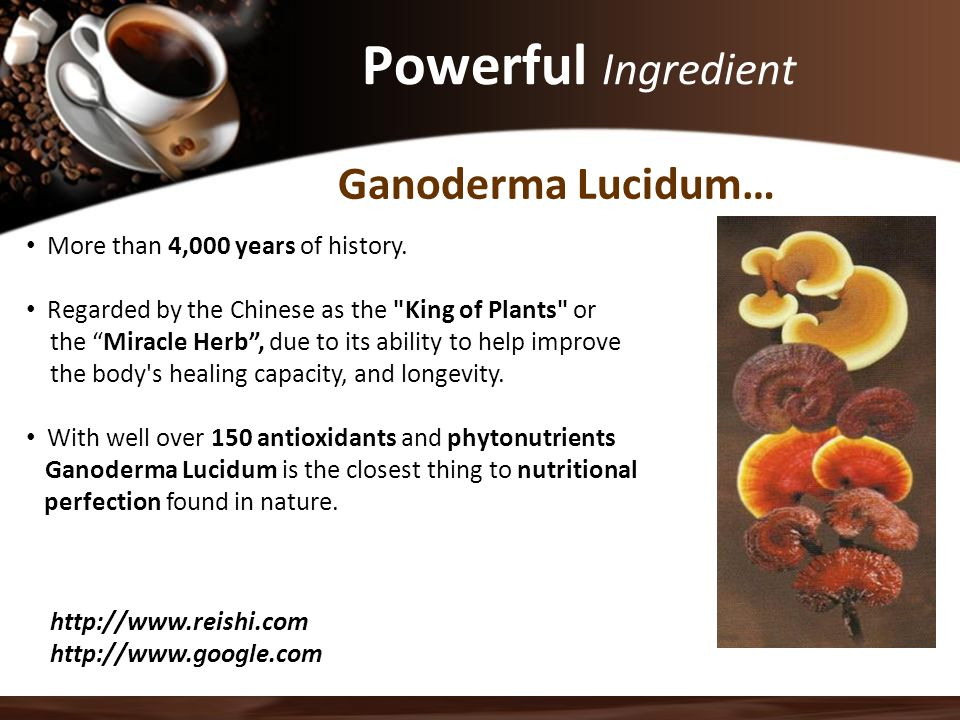 Powerful Ingredient Ganoderma Lucidum…