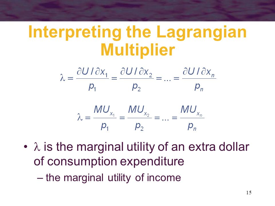 Interpreting the Lagrangian Multiplier