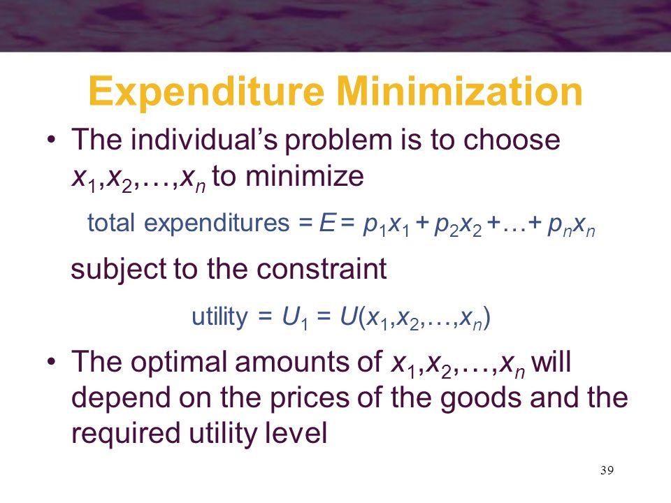 Expenditure Minimization
