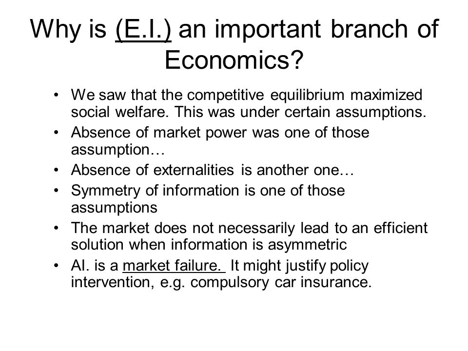 Why is (E.I.) an important branch of Economics