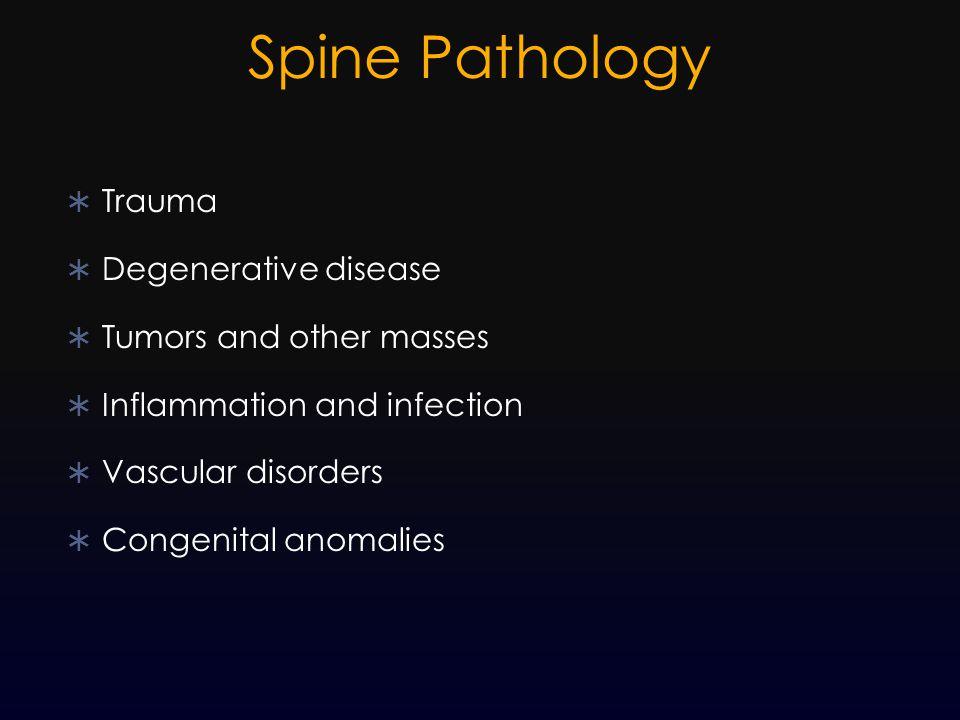 Spine Pathology Trauma Degenerative disease Tumors and other masses