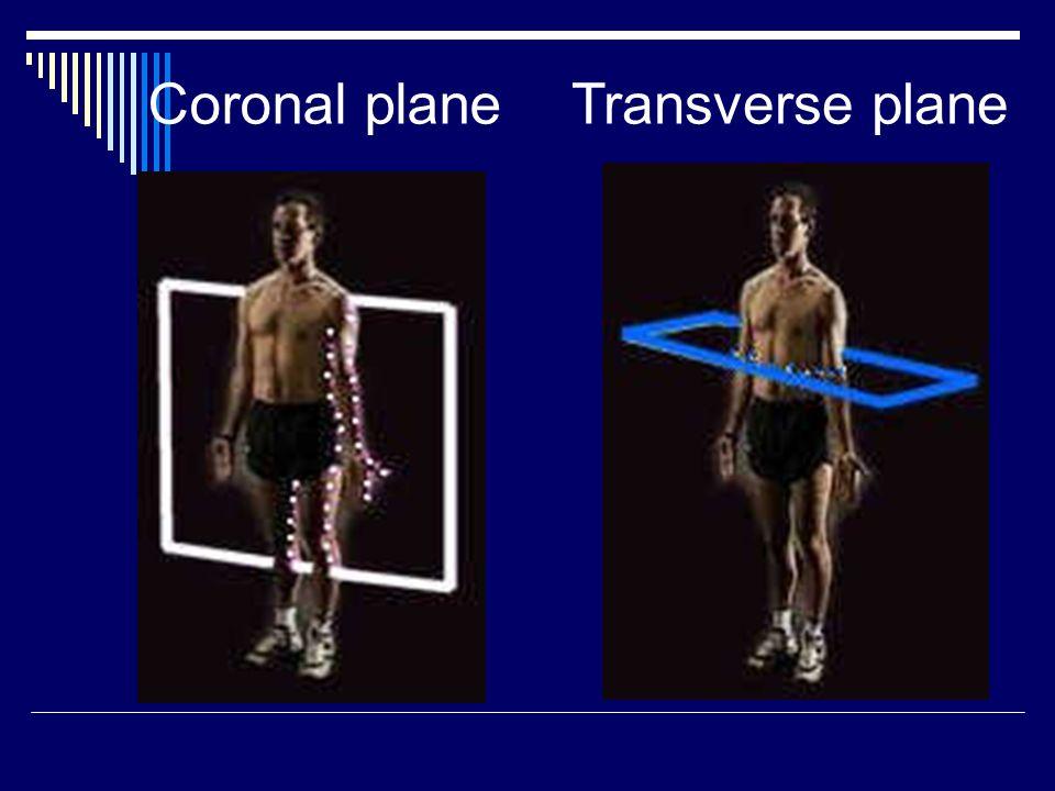 Coronal plane Transverse plane