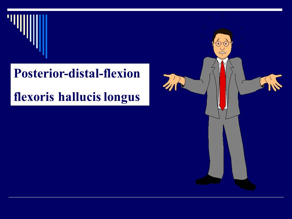 Posterior-distal-flexion