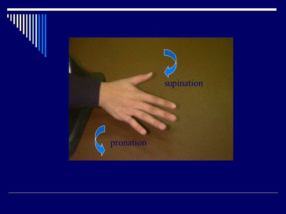 supination pronation