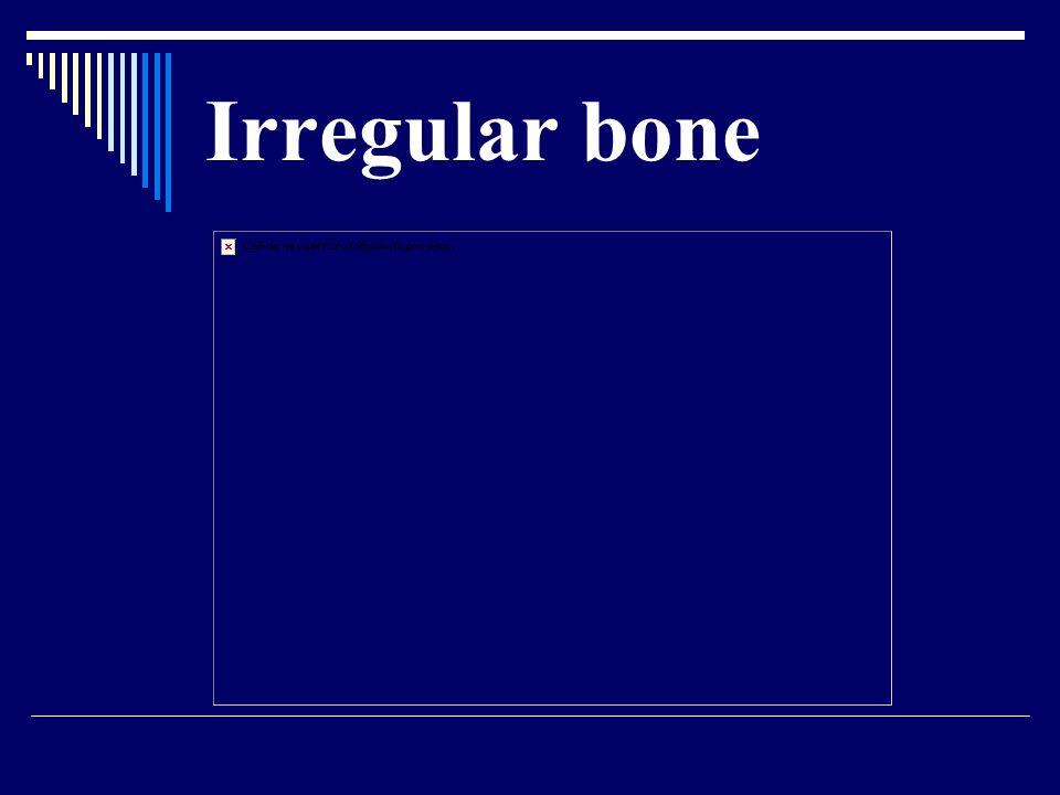 Irregular bone