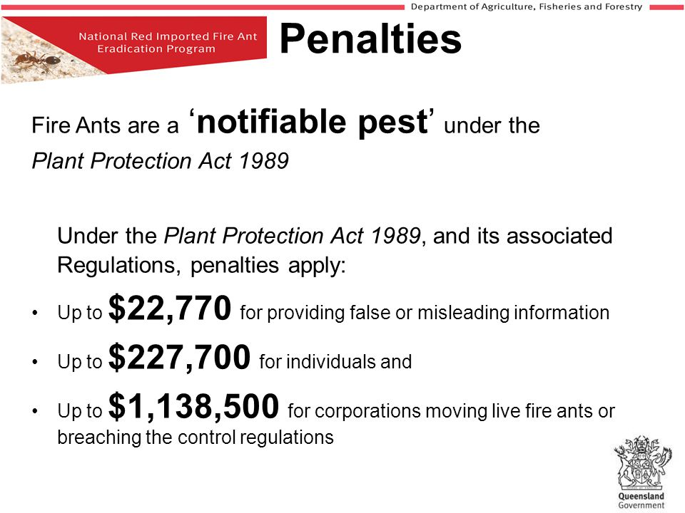 Penalties Fire Ants are a 'notifiable pest' under the. Plant Protection Act 1989.